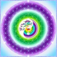 Fleur de vie Hinami, toute en douceur, elle connecte aux forces de croissance et d'évolution. Elle favorise les changements  paisibles.