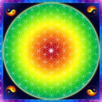 Fleur de vie terre mère. Excellente pour l'ancrage et le contact avec les énergies telluriques, Terre mère renforce les structures du corps.